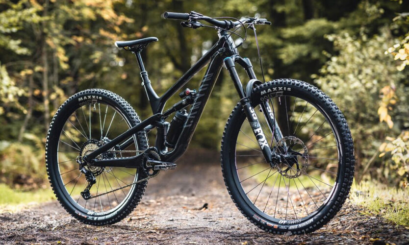 Canyon 29er Spectral